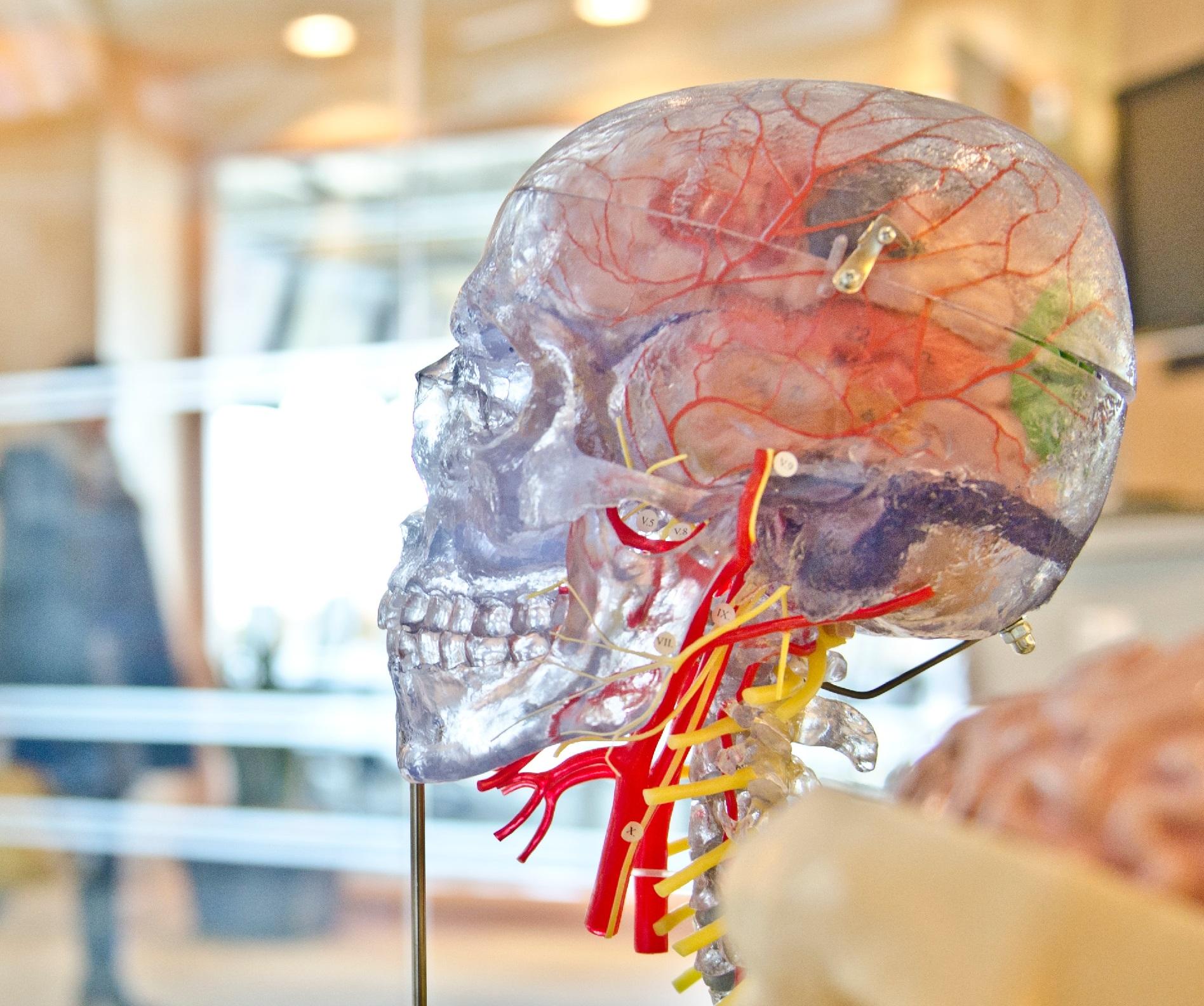 Smart Brain Data Analyse